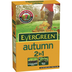 EverGreen Autumn