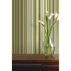 Arthouse Sophia Stripe Green Wallpaper