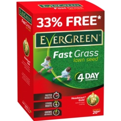 EverGreen Fast Grass Lawn Seed Extra
