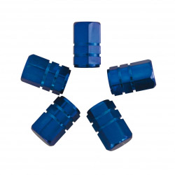 Valve Piston Blue Caps