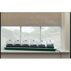 Parasene Electric Window Ledge Propogator