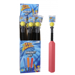 Hot Shots Cricket Set