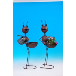 Ackerman Ant Stand Assorted Large