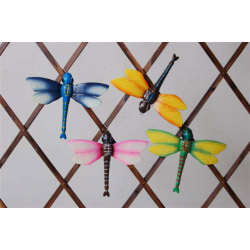 Ackerman Wall Fly Assorted