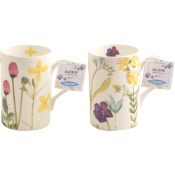 Rayware Fine Bone China Mugs