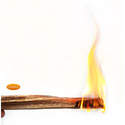 Gardeco Ocote Natural Wood Firelighter Sticks