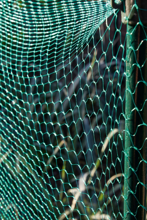 Ambassador Garden Net Green - 15mm x 3 x 2m