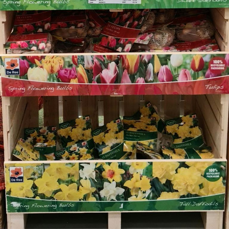 De Ree UK Spring Flowering-Daffodil & Tulip Crate