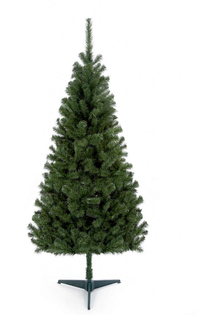 Premier Douglas Fir Tree - 1.8m