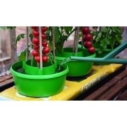 Garland Plant Halos Green