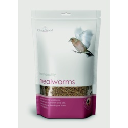 Chapelwood Mealworms