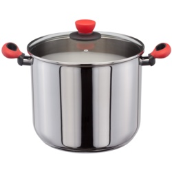 Judge Stockpot With Red Fittings