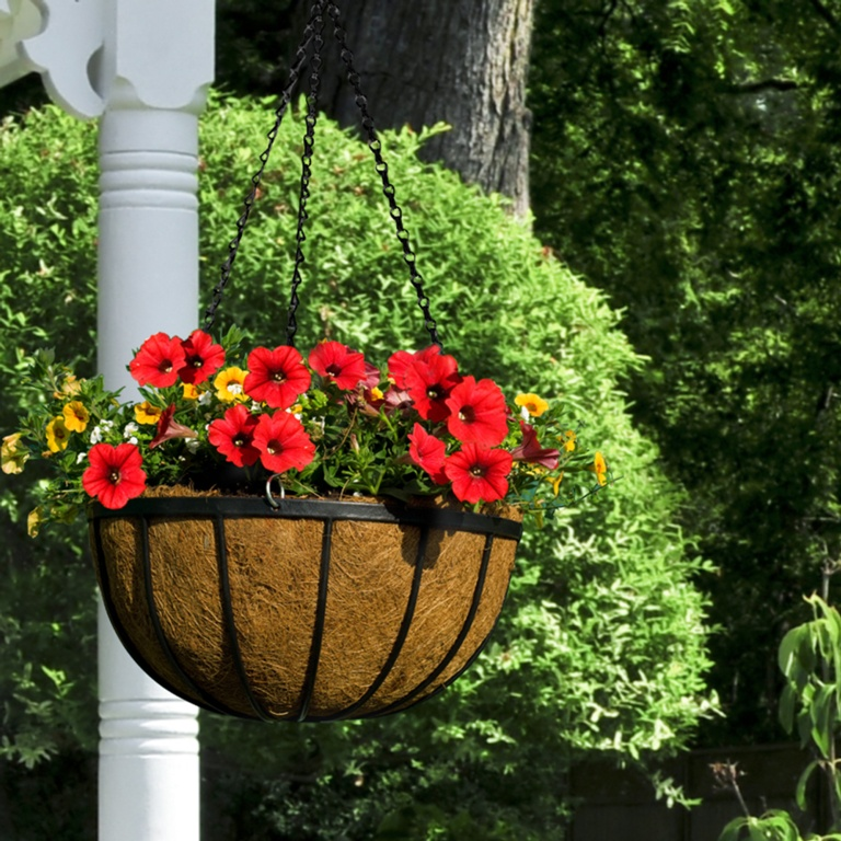 Ambassador Flat Bar Hanging Basket - 12""