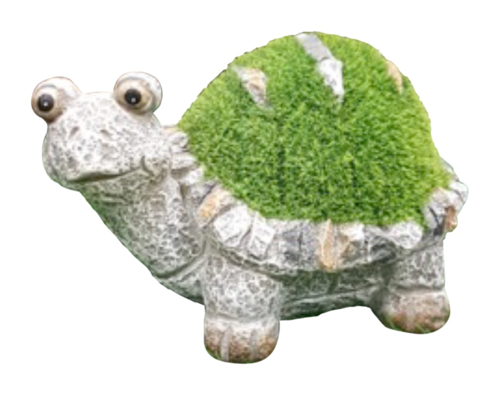 Kent Collection Flocked Turtle - S