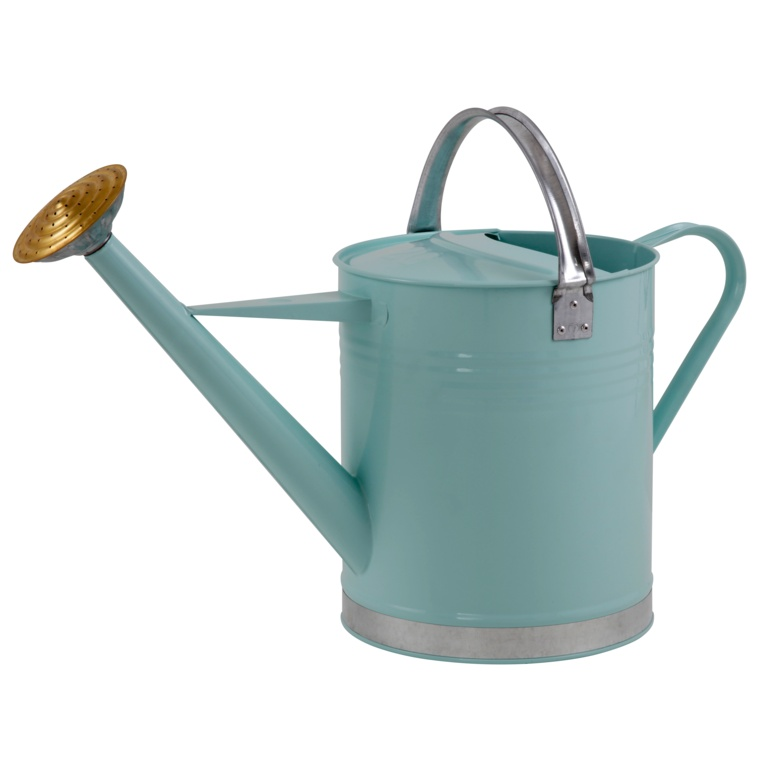 Ambassador Metal Watering Can - Green 2 Gallon