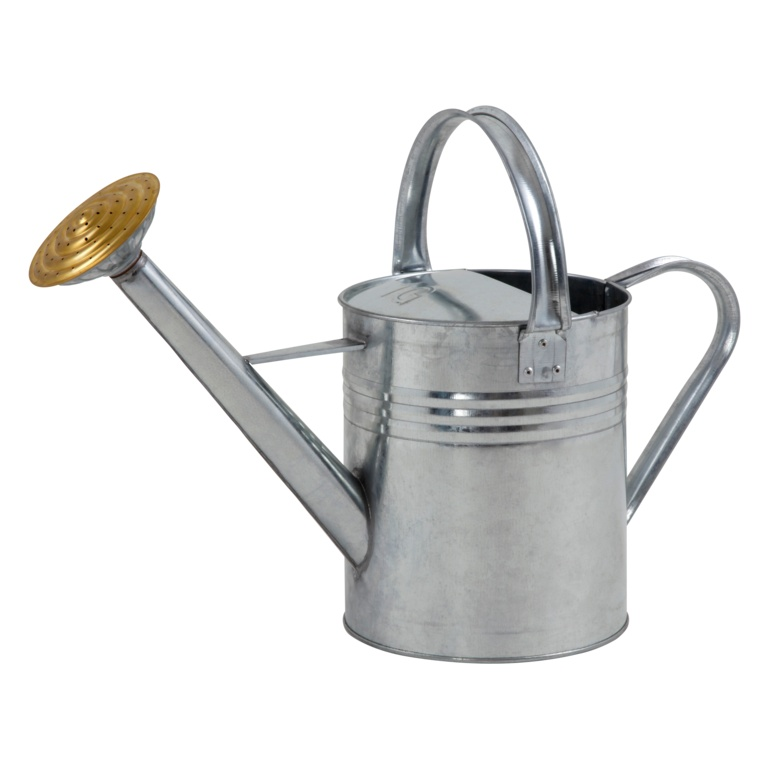 Ambassador Galvanised Watering Can - 1 Gallon