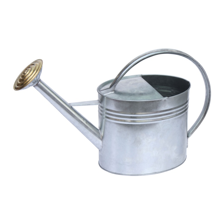 Ambassador Oval Galvanised Watering Can - 5L