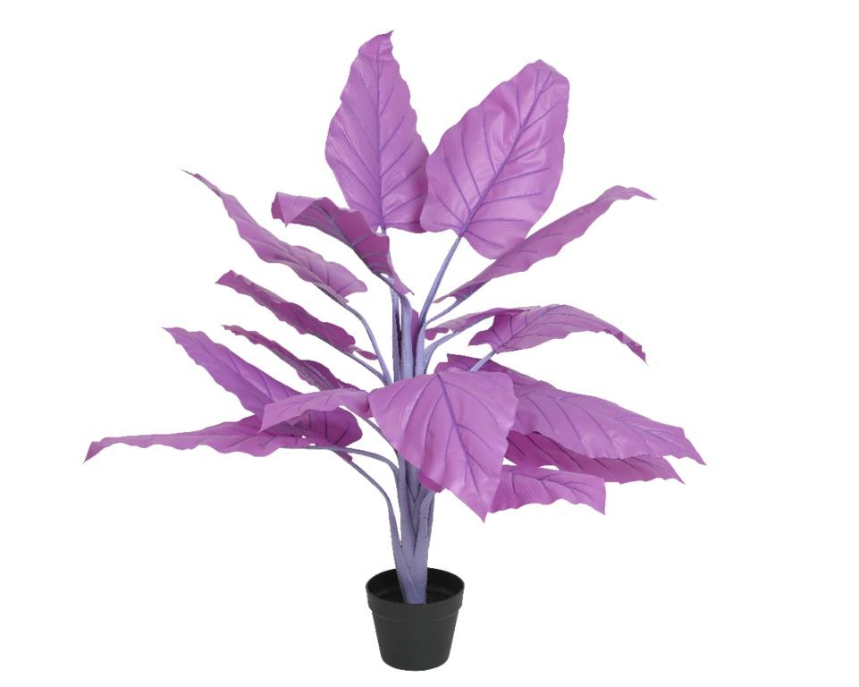 Kaemingk PLC Banana Plant In Pot Purple - 80 x 104