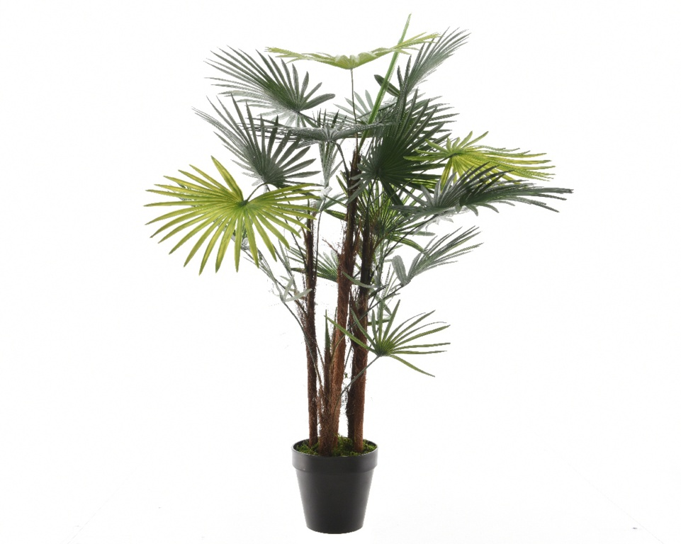 Kaemingk Plastic Fortunei Green Palm - 90cm