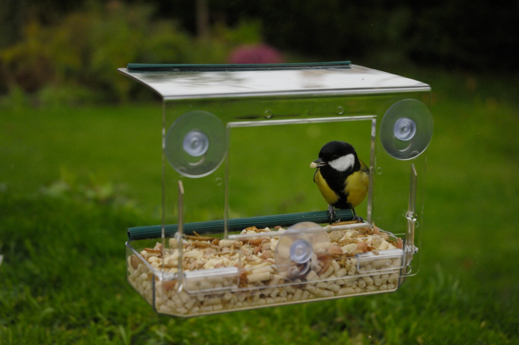 Rspb Window Feeder Stax Trade Centres