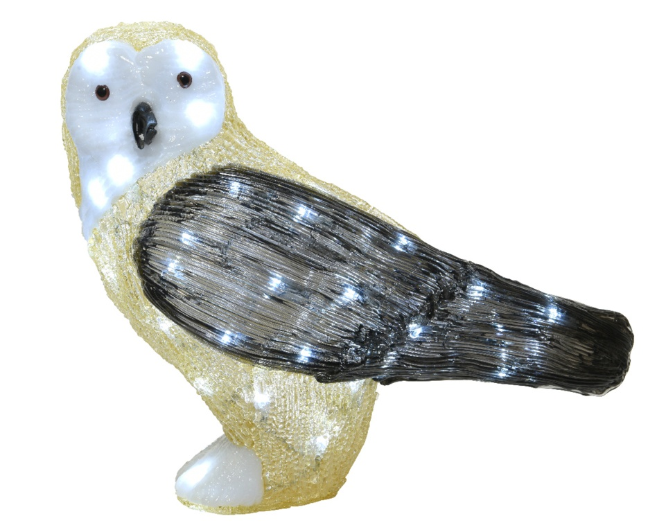 Kaemingk LED Acrylic Outdoor Owl - Cool White 50 Light