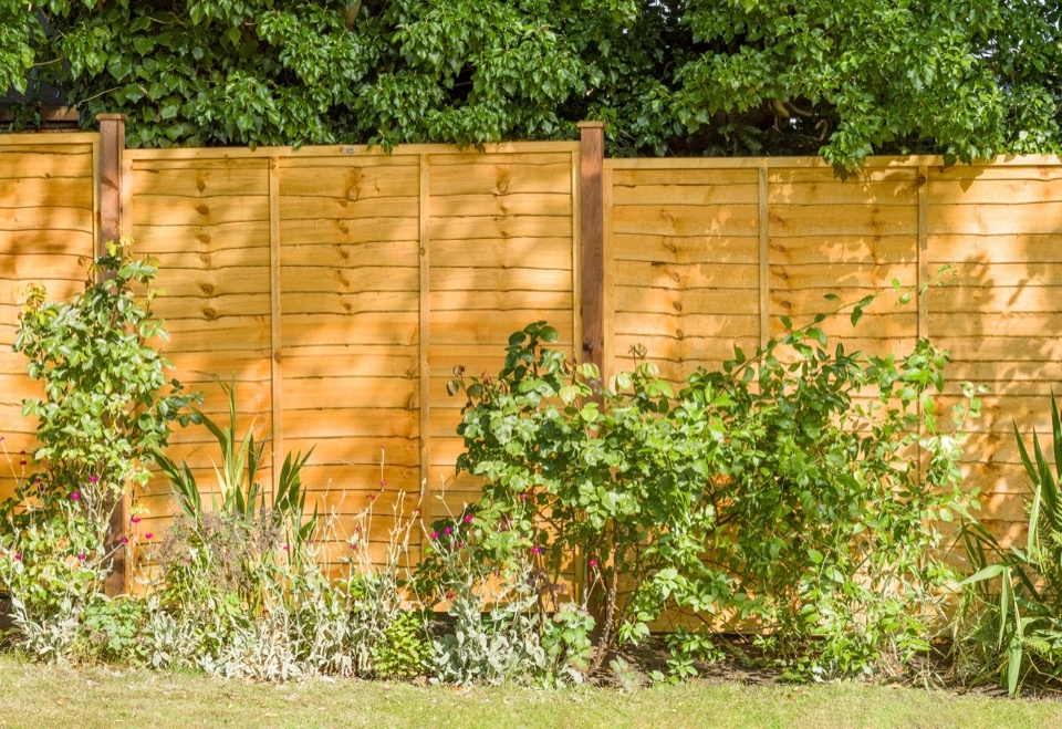 Grange Pressure Treated Fence Panel - 1.83m x 120cm