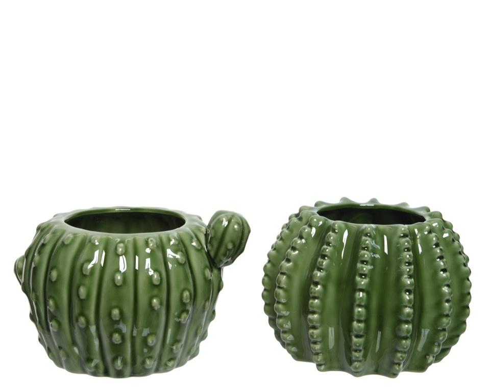 Kaemingk Porcelain Cactus Pot - Green Assorted