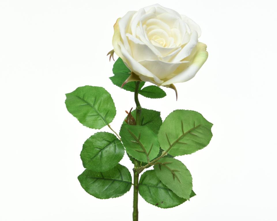 Kaemingk Silk Rose Open On Stem - 68cm White