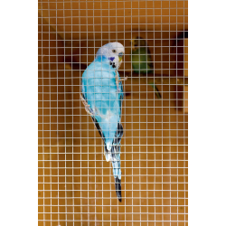 SupaGarden Cage and Aviary Welded Panel 0.6 x 0.9m