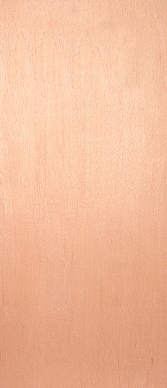 "Jeld Wen External Plywood Faced Fire Door (32"") - 2032 x 813mm (6'8"" x 2'8"")"