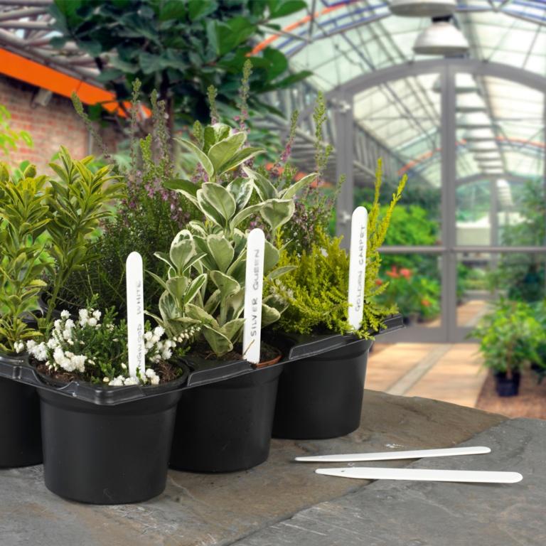 Ambassador Plant Labels - Pack 100 5