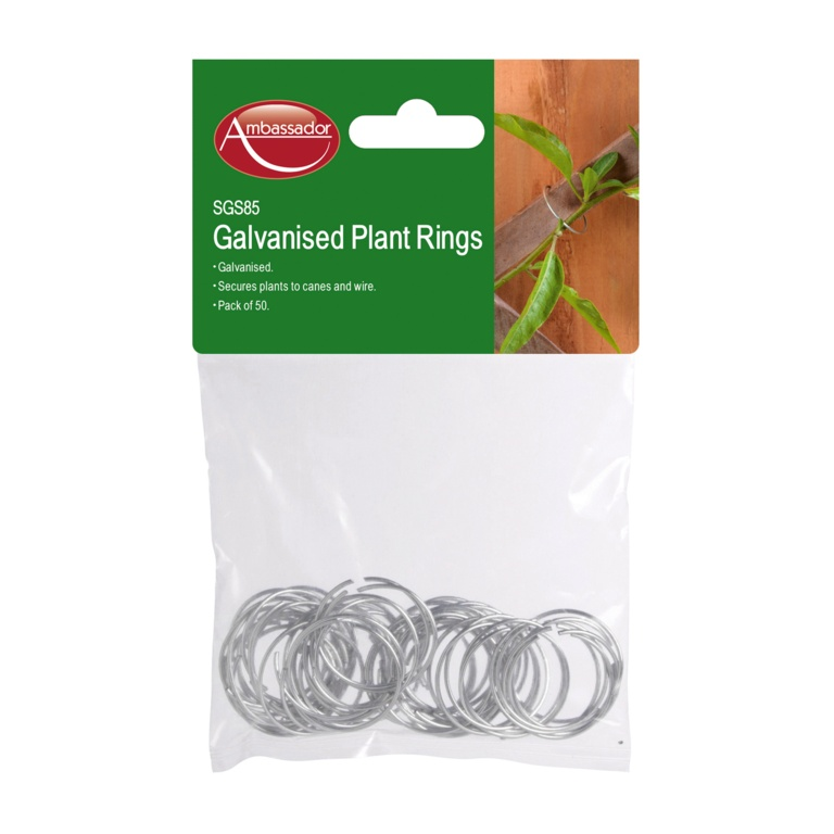 Ambassador Galvanised Plant Rings
