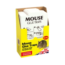 The Big Cheese Mouse Glue Trap