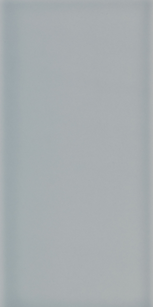 Johnson Tiles Savoy Gloss 200 x 100 x 6.5mm - Leaf Pack Of 20